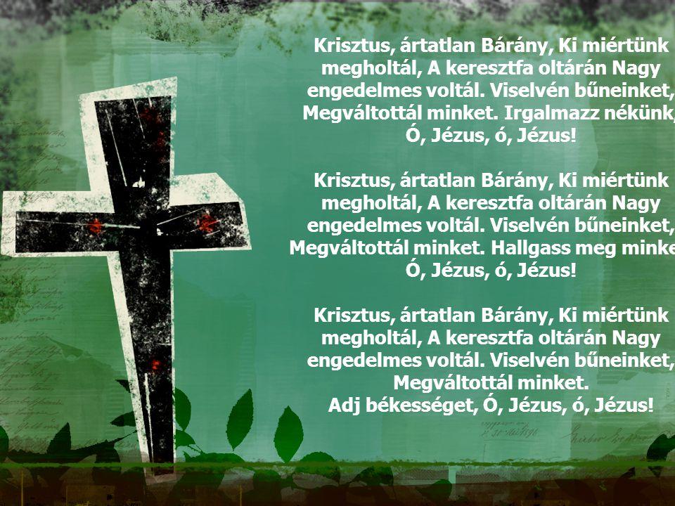 Krisztus, ártatlan Bárány, Ki miértünk megholtál, A keresztfa oltárán Nagy engedelmes voltál. Viselvén bűneinket, Megváltottál minket. Irgalmazz nékünk,
