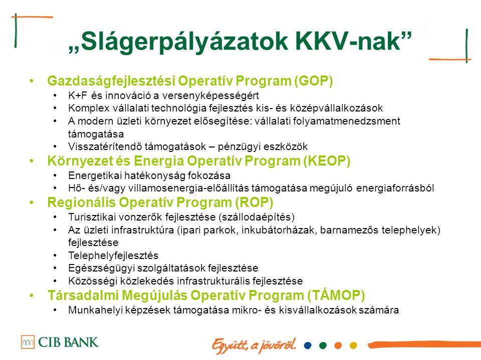 """""""Slágerpályázatok KKV-nak"""