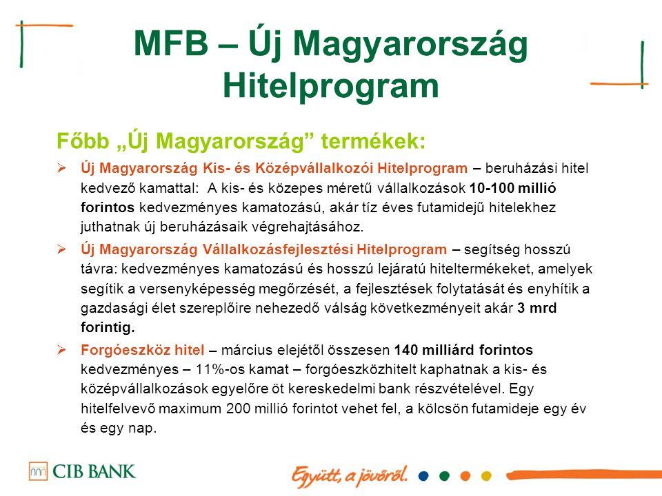 MFB – Új Magyarország Hitelprogram