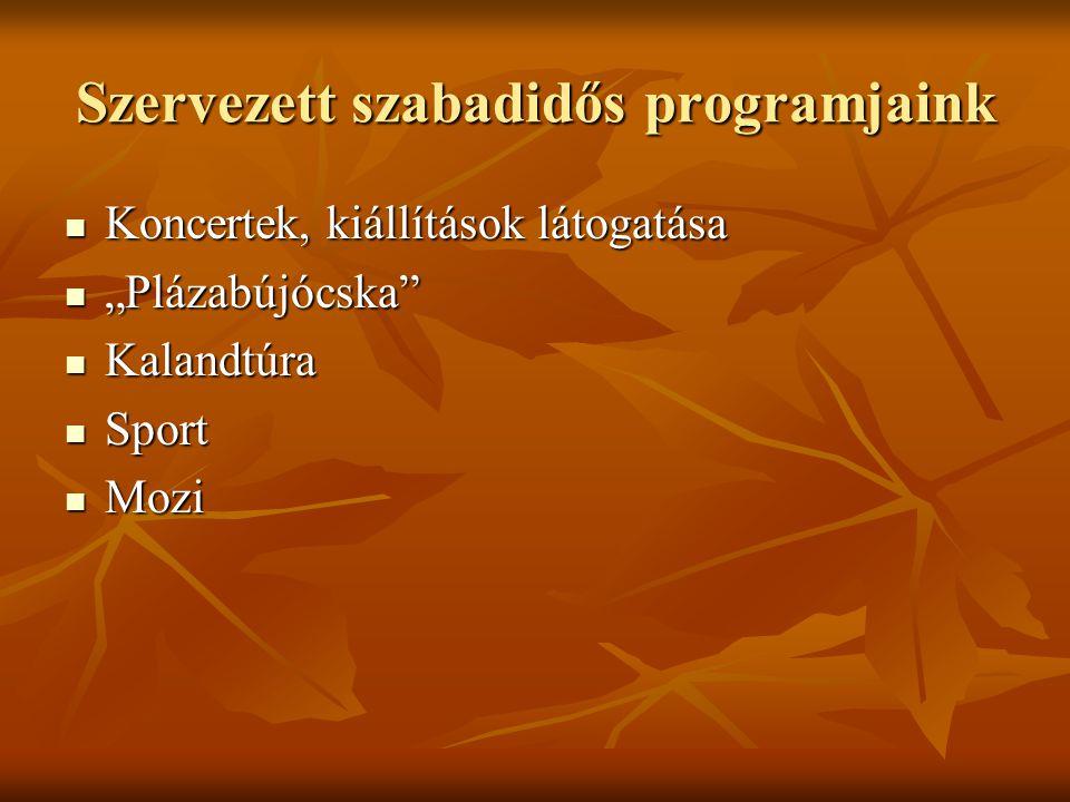 Szervezett szabadidős programjaink