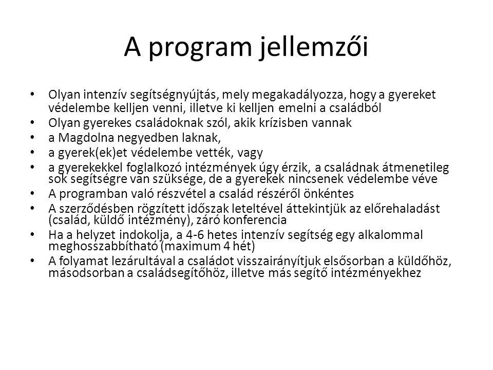 A program jellemzői