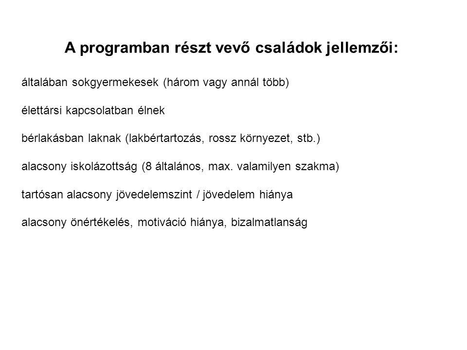 A programban részt vevő családok jellemzői: