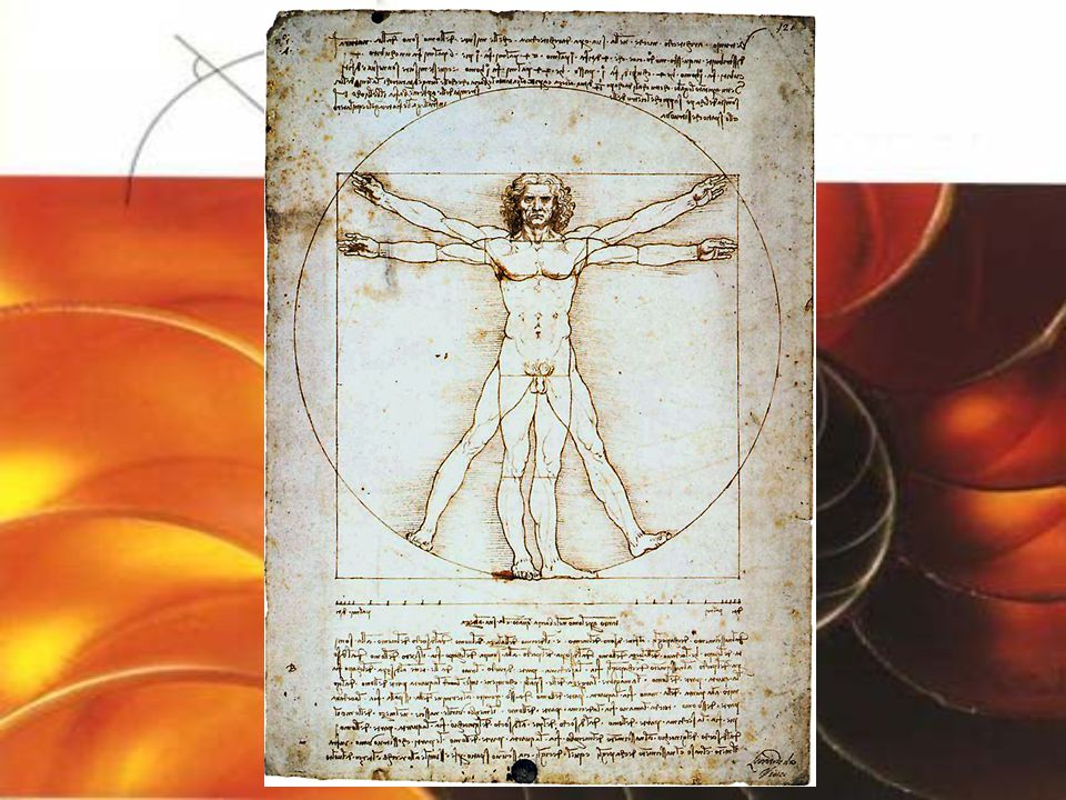 Több neves művész illetve műalkotás épít az aranymetszés szabályaira