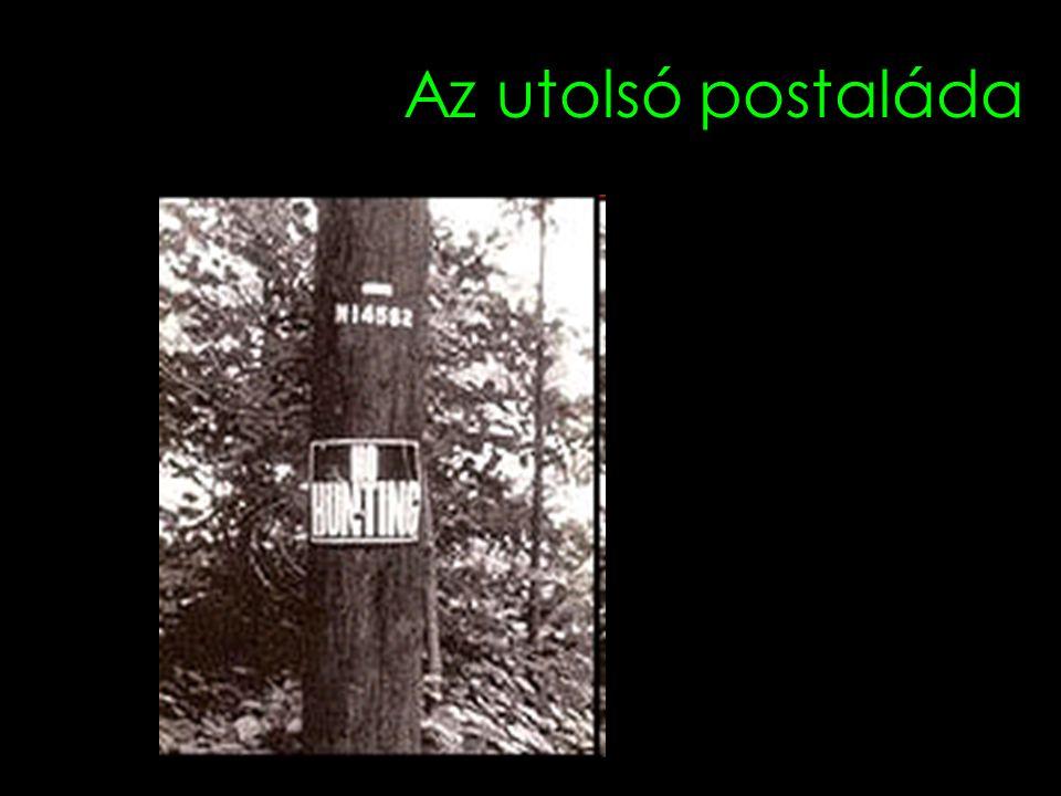 Az utolsó postaláda