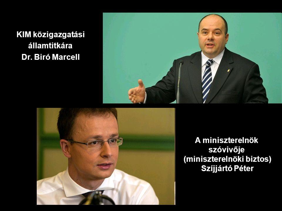 (miniszterelnöki biztos)