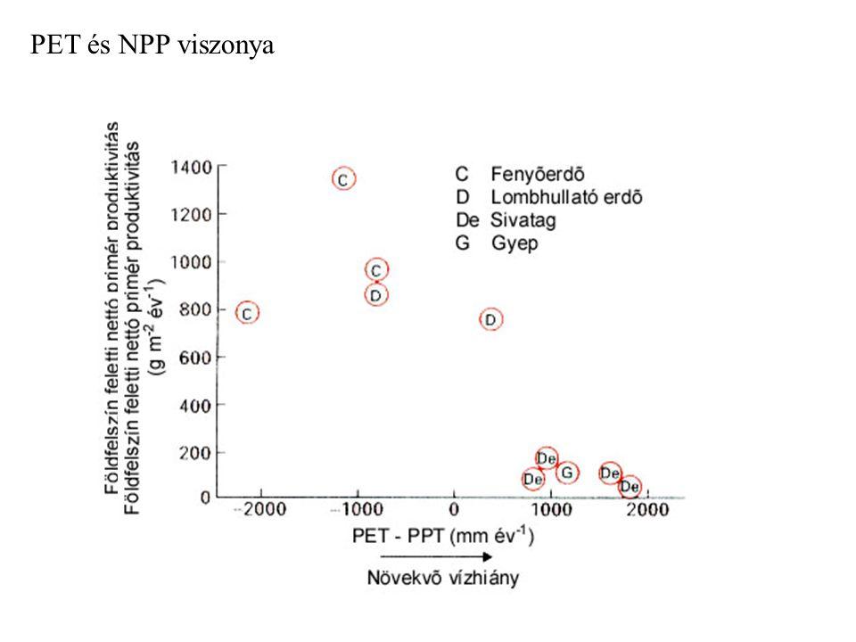 PET és NPP viszonya