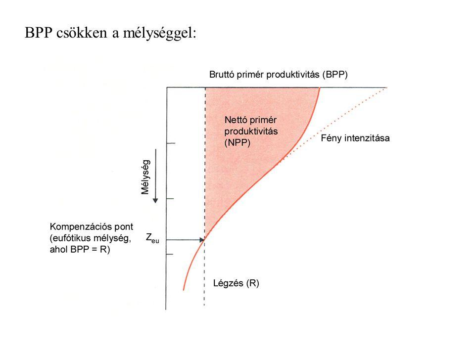 BPP csökken a mélységgel: