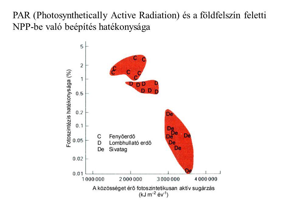 PAR (Photosynthetically Active Radiation) és a földfelszín feletti NPP-be való beépítés hatékonysága