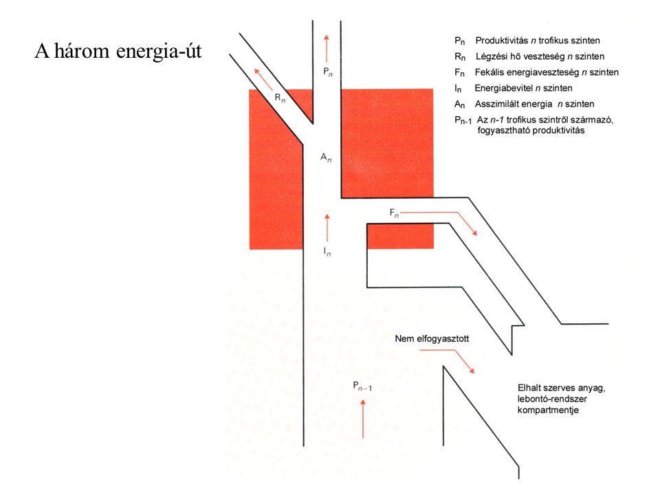 A három energia-út