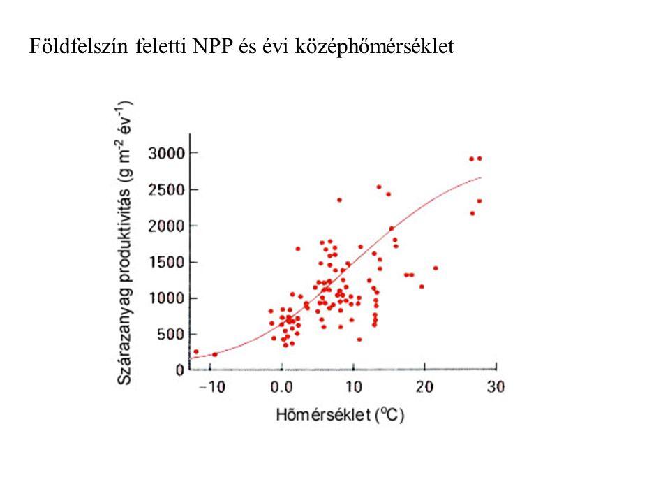 Földfelszín feletti NPP és évi középhőmérséklet