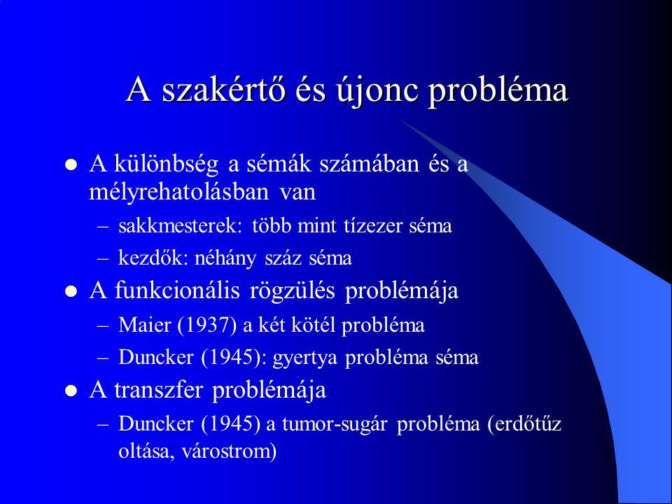 A szakértő és újonc probléma