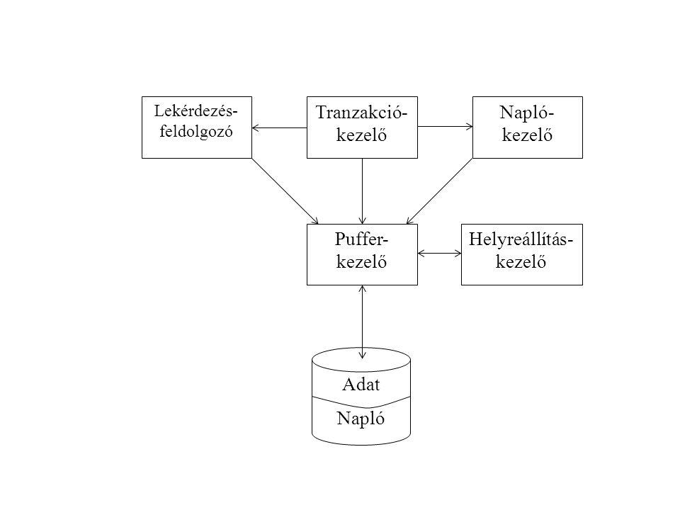 Adat Napló Tranzakció- kezelő Napló- Puffer- Helyreállítás-