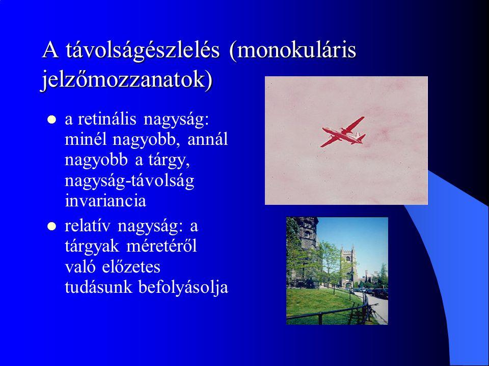 A távolságészlelés (monokuláris jelzőmozzanatok)