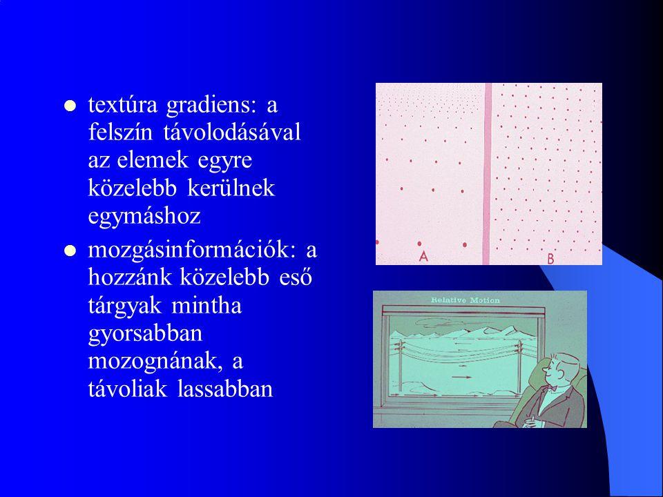 textúra gradiens: a felszín távolodásával az elemek egyre közelebb kerülnek egymáshoz