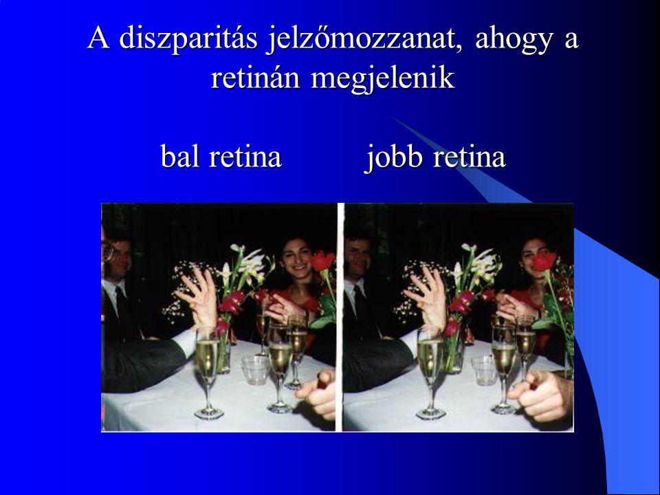 A diszparitás jelzőmozzanat, ahogy a retinán megjelenik bal retina jobb retina