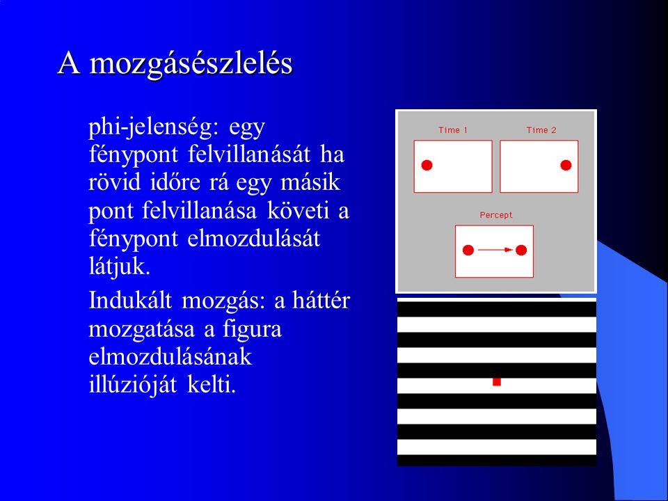 A mozgásészlelés phi-jelenség: egy fénypont felvillanását ha rövid időre rá egy másik pont felvillanása követi a fénypont elmozdulását látjuk.