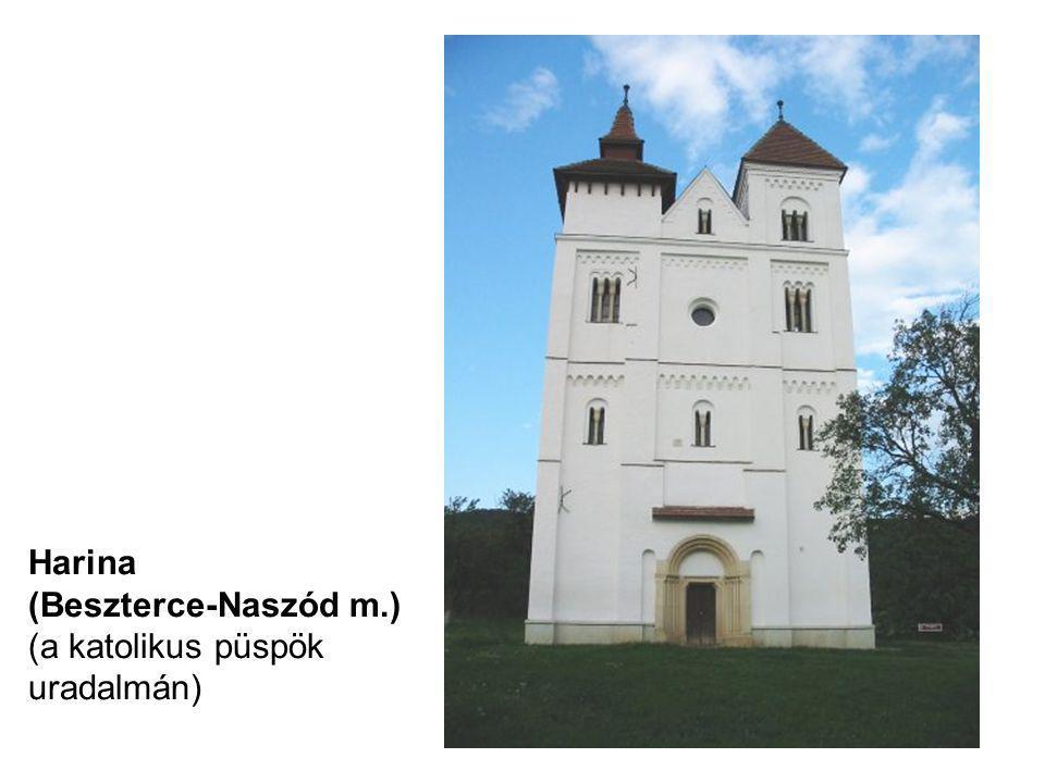 Harina (Beszterce-Naszód m.) (a katolikus püspök uradalmán)