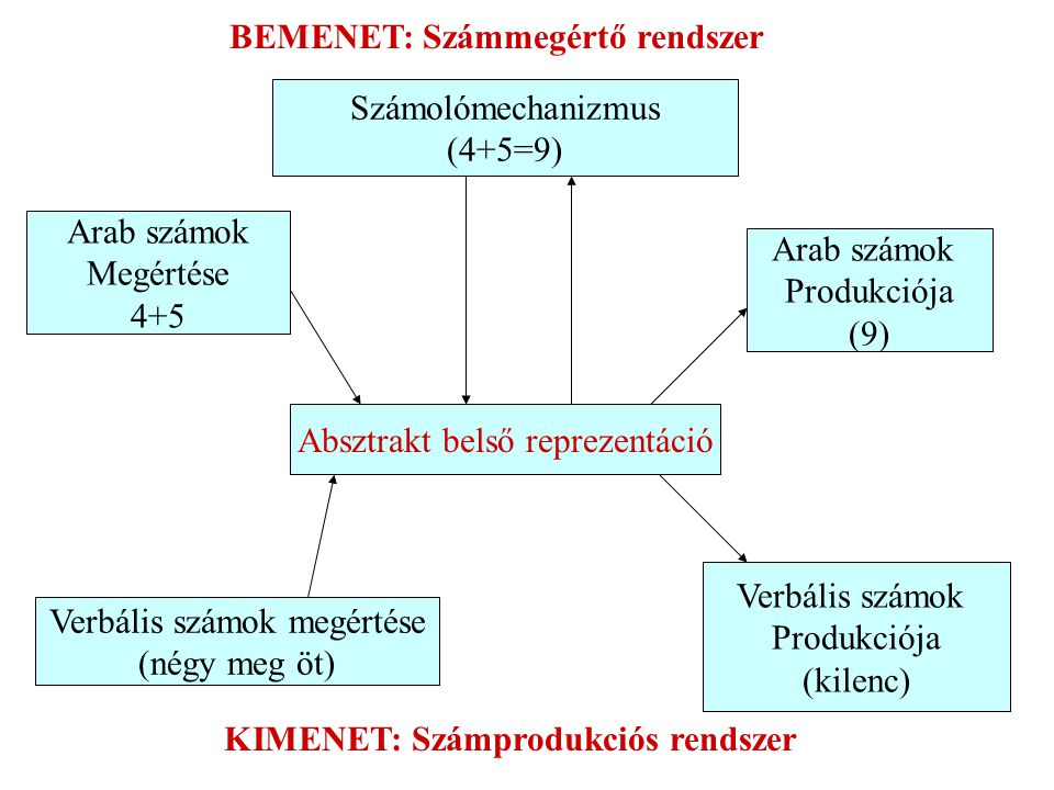 BEMENET: Számmegértő rendszer KIMENET: Számprodukciós rendszer