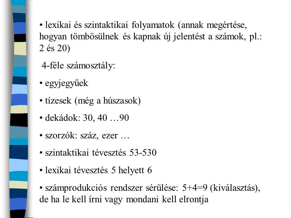 lexikai és szintaktikai folyamatok (annak megértése, hogyan tömbösülnek és kapnak új jelentést a számok, pl.: 2 és 20)