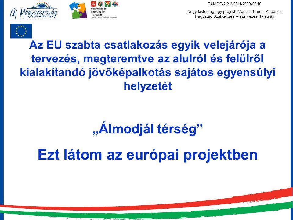Ezt látom az európai projektben