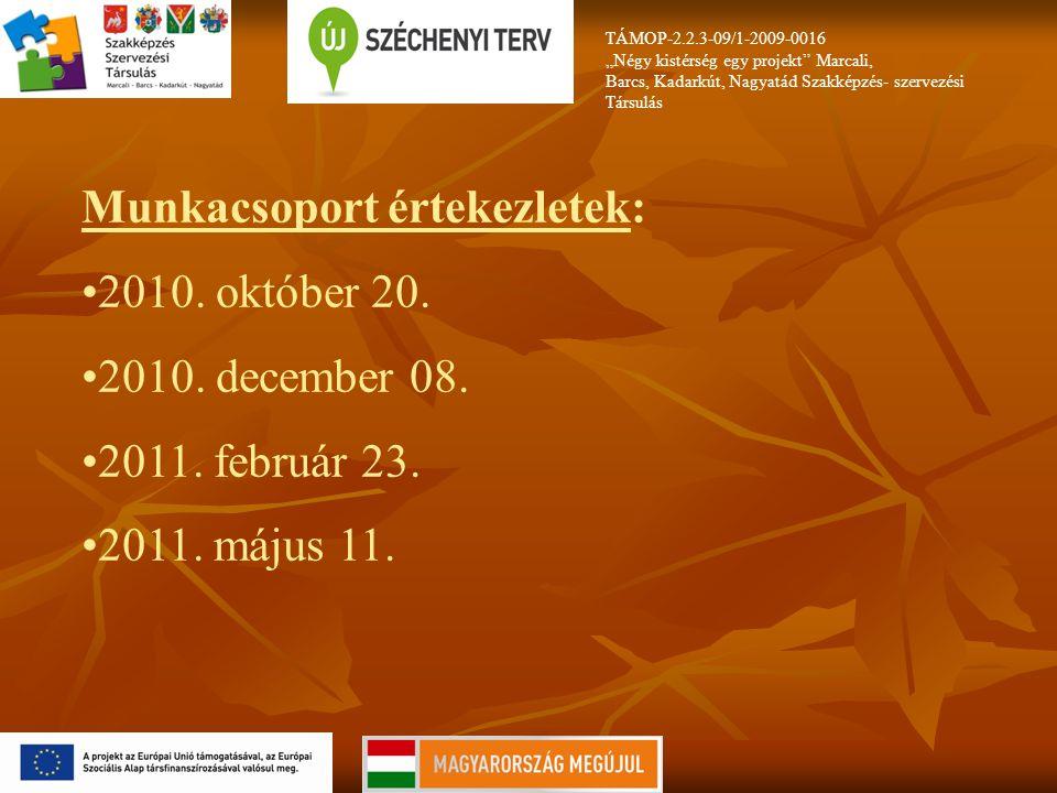 Munkacsoport értekezletek: 2010. október 20. 2010. december 08.