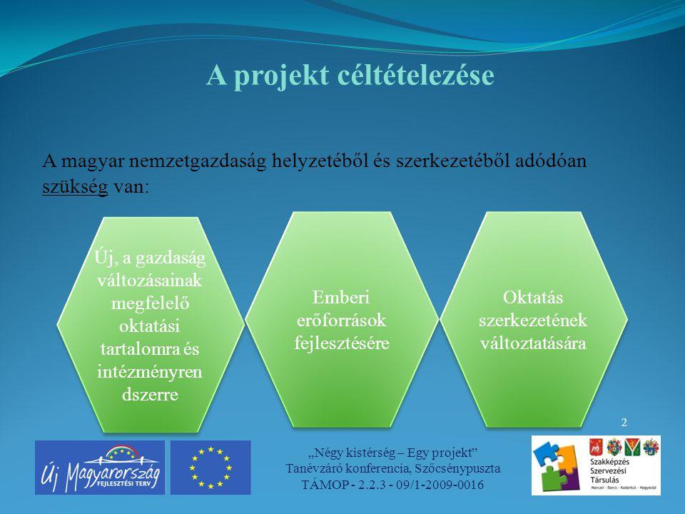 A projekt céltételezése