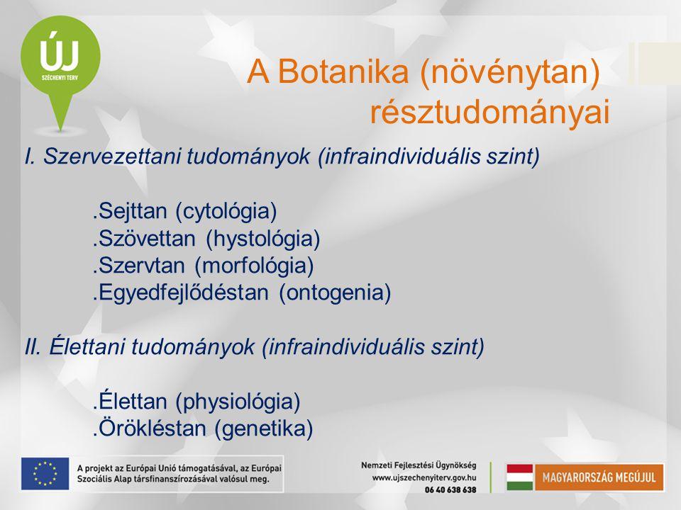 A Botanika (növénytan)
