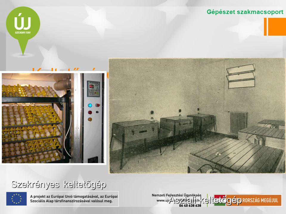 Keltetőgépek Szekrényes keltetőgép Asztali keltetőgép