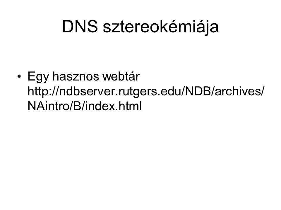 DNS sztereokémiája Egy hasznos webtár http://ndbserver.rutgers.edu/NDB/archives/NAintro/B/index.html.