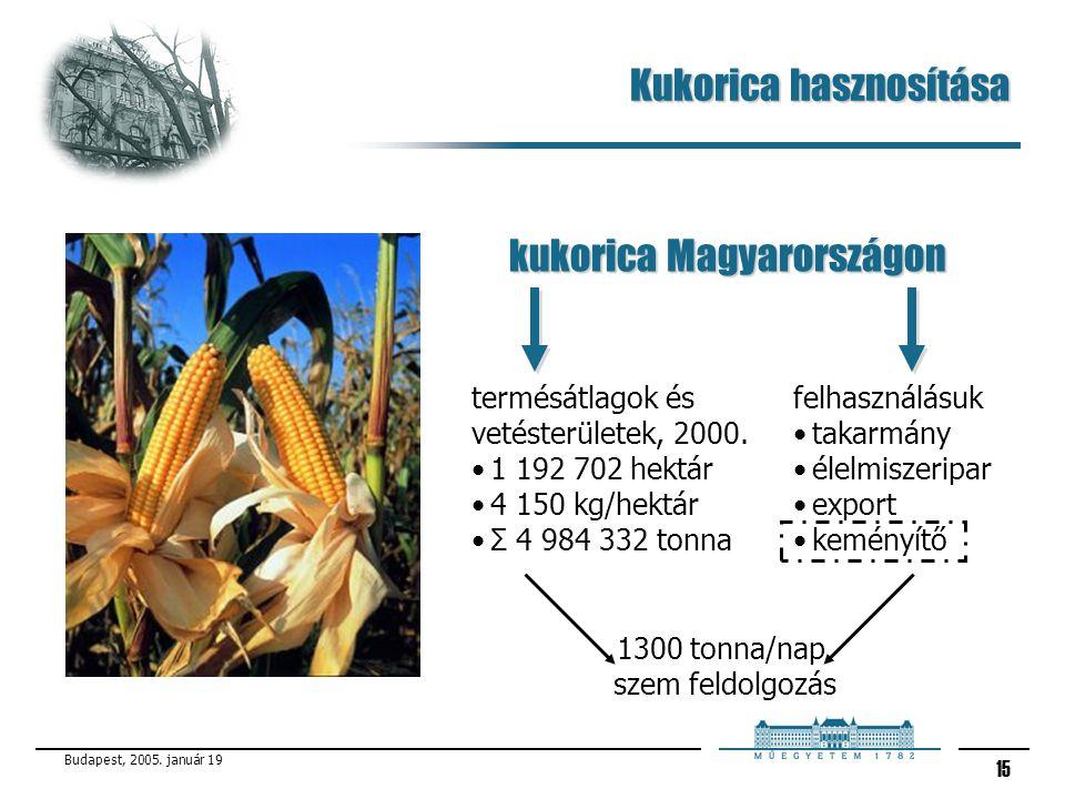 Kukorica hasznosítása