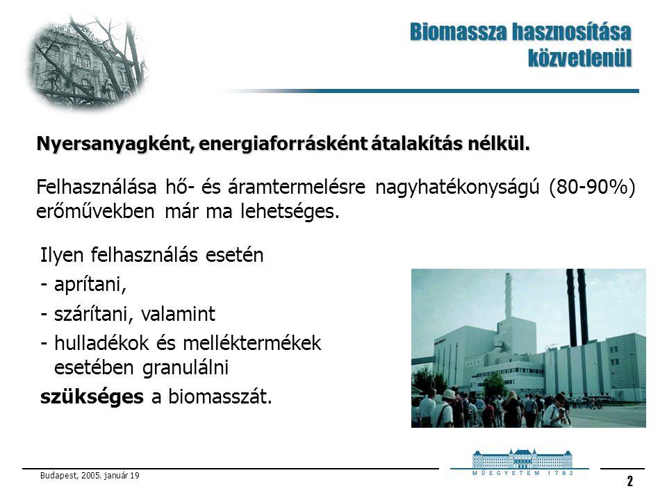 Biomassza hasznosítása közvetlenül