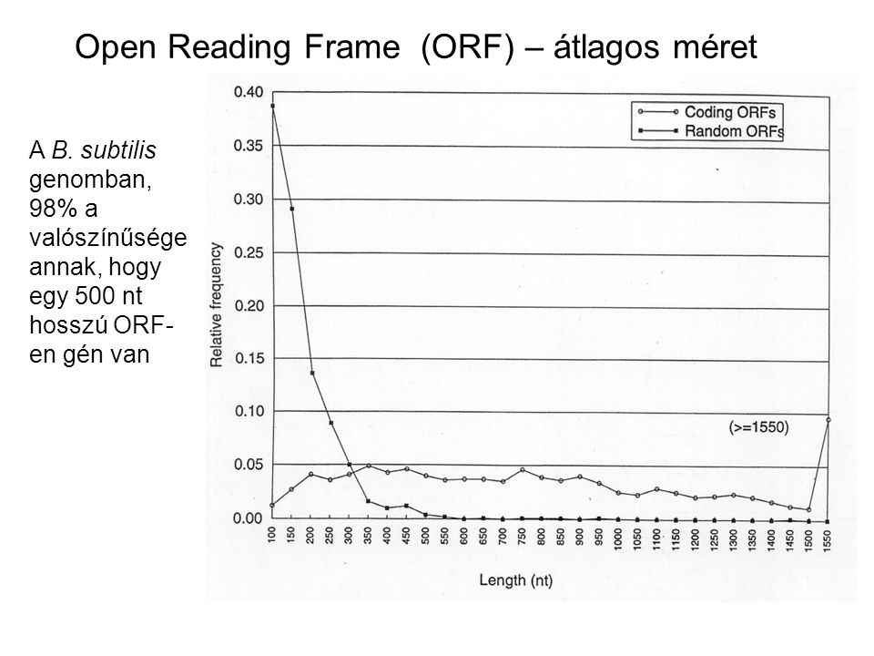 Open Reading Frame (ORF) – átlagos méret