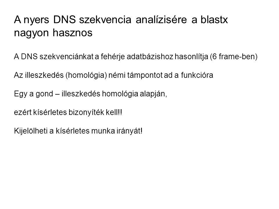 A nyers DNS szekvencia analízisére a blastx nagyon hasznos