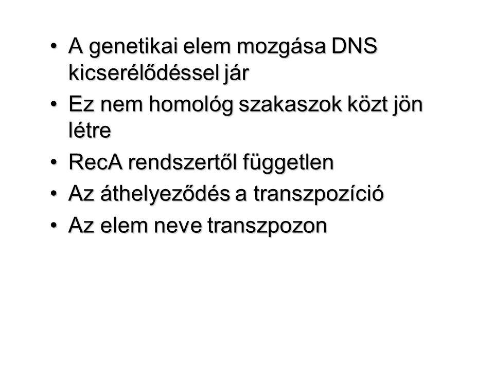 A genetikai elem mozgása DNS kicserélődéssel jár
