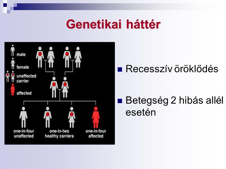 Genetikai háttér Recesszív öröklődés Betegség 2 hibás allél esetén