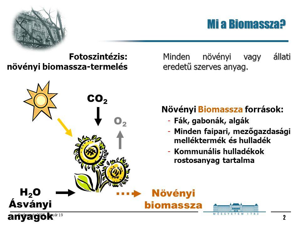 Mi a Biomassza CO2 O2 H2O Növényi biomassza Ásványi anyagok