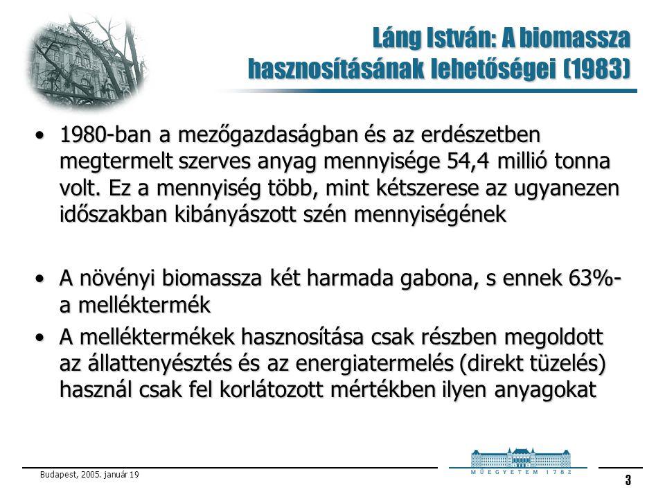 Láng István: A biomassza hasznosításának lehetőségei (1983)