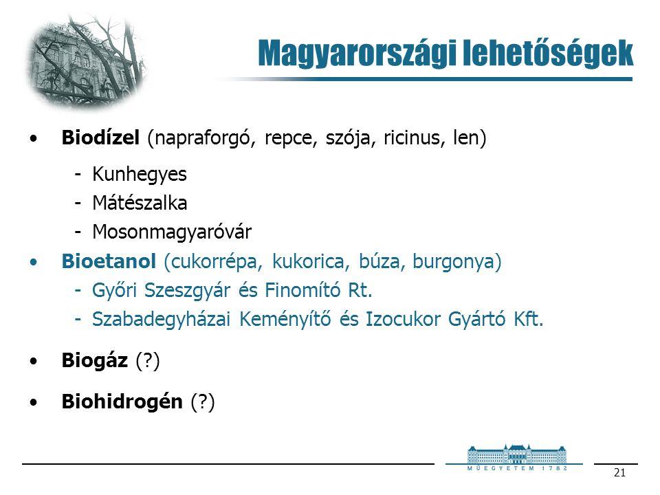 Magyarországi lehetőségek