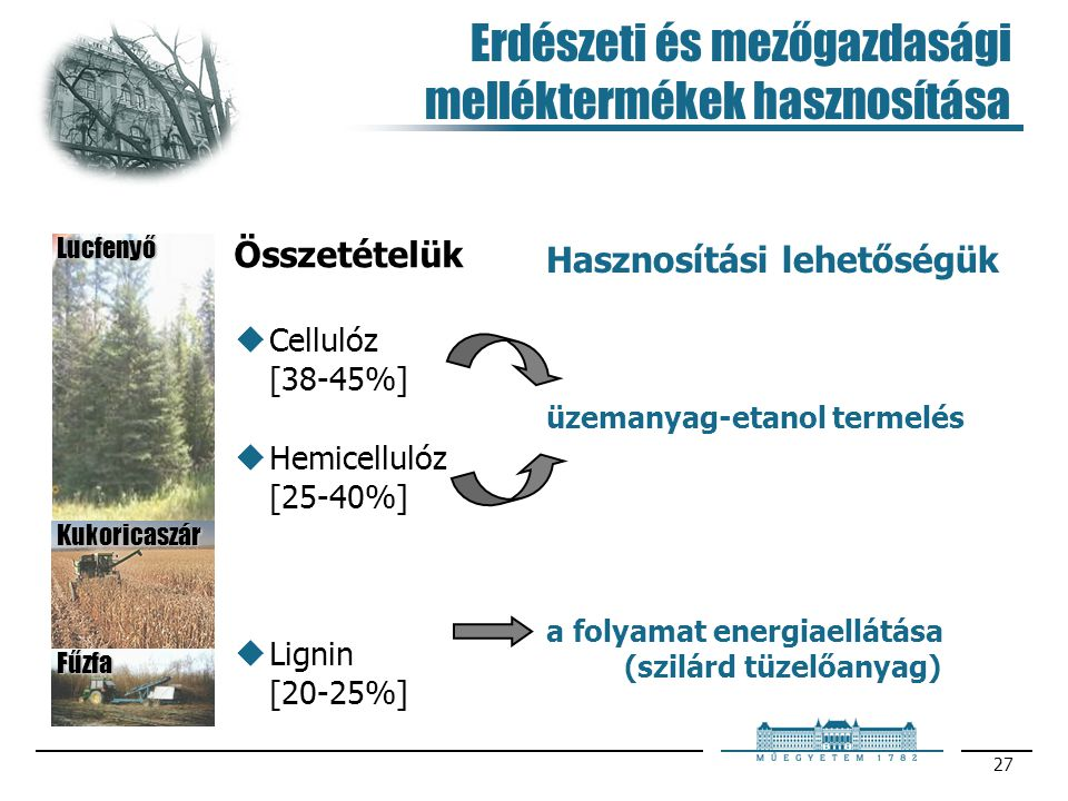 Erdészeti és mezőgazdasági melléktermékek hasznosítása
