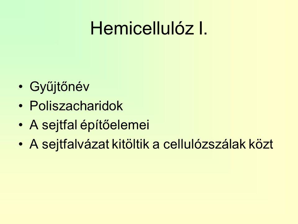 Hemicellulóz I. Gyűjtőnév Poliszacharidok A sejtfal építőelemei