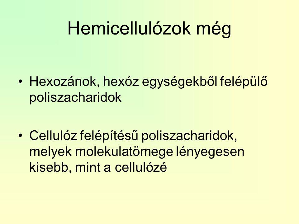 Hemicellulózok még Hexozánok, hexóz egységekből felépülő poliszacharidok.