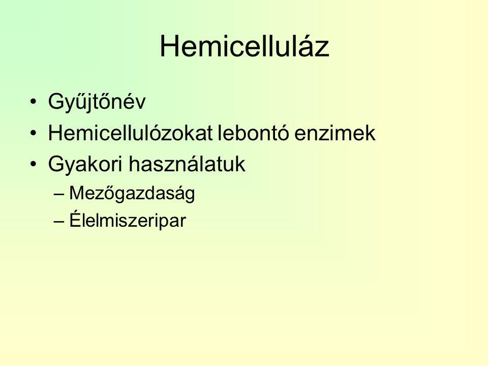 Hemicelluláz Gyűjtőnév Hemicellulózokat lebontó enzimek