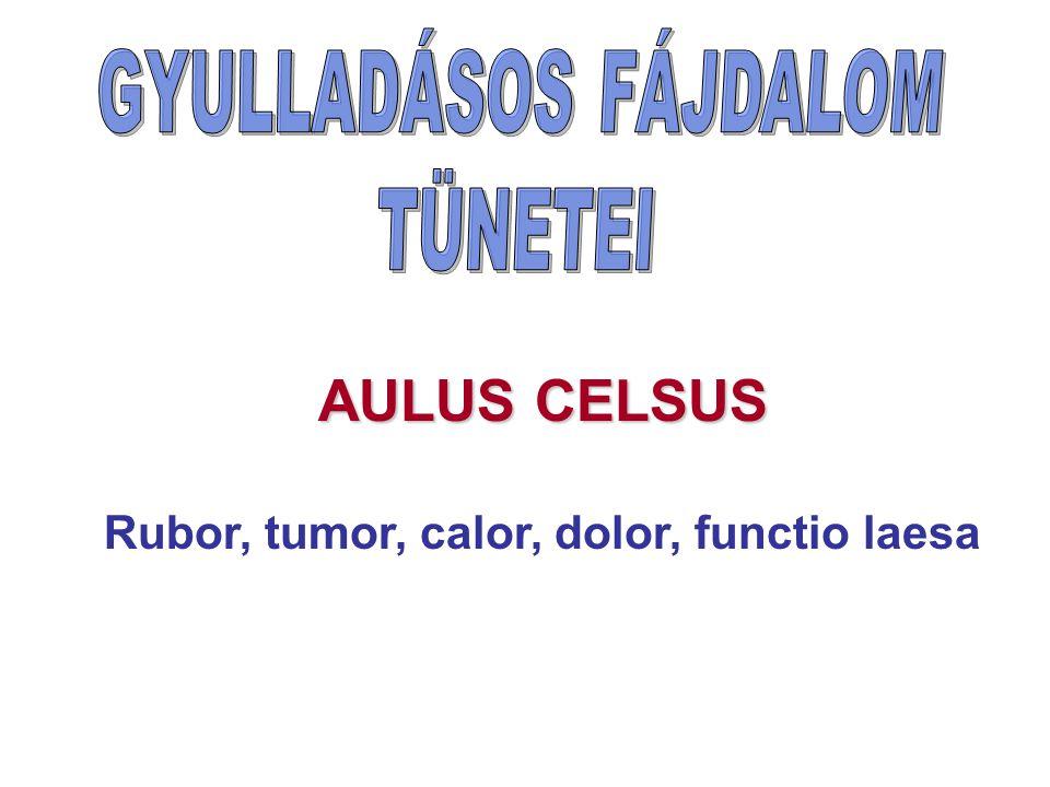 Rubor, tumor, calor, dolor, functio laesa