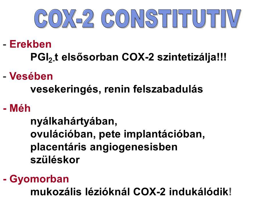 COX-2 CONSTITUTIV Erekben PGI2-t elsősorban COX-2 szintetizálja!!! Vesében vesekeringés, renin felszabadulás.
