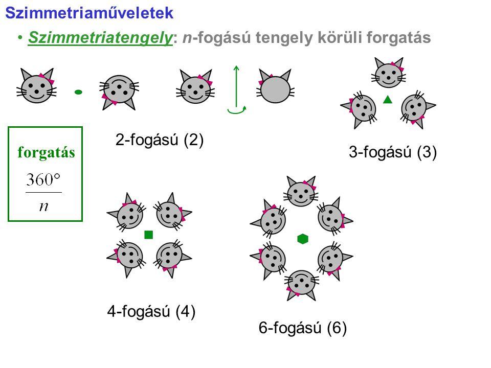 Szimmetriaműveletek • Szimmetriatengely: n-fogású tengely körüli forgatás. 2-fogású (2) forgatás.
