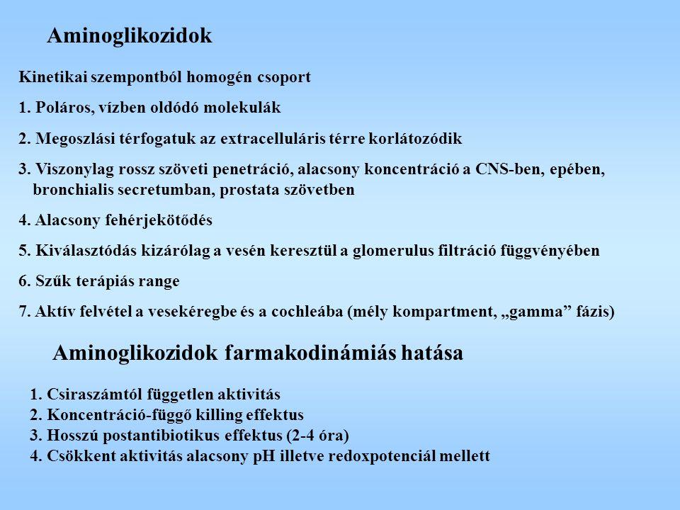 Aminoglikozidok farmakodinámiás hatása