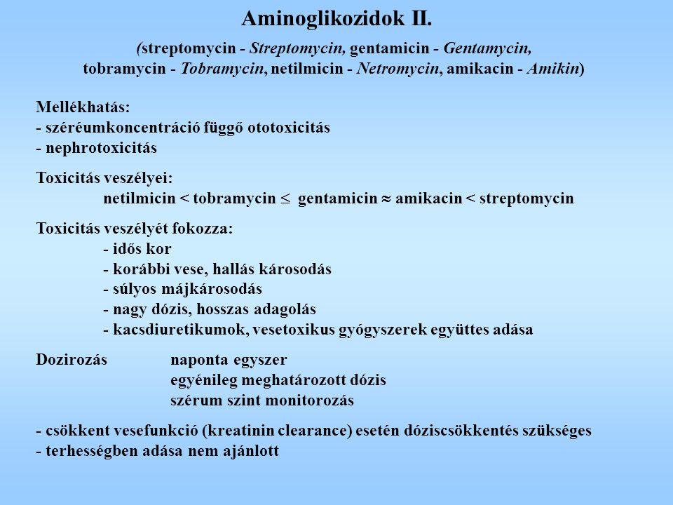Aminoglikozidok II. (streptomycin - Streptomycin, gentamicin - Gentamycin, tobramycin - Tobramycin, netilmicin - Netromycin, amikacin - Amikin)