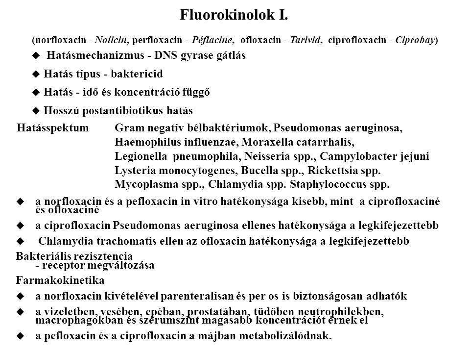 Fluorokinolok I. Hatásmechanizmus - DNS gyrase gátlás