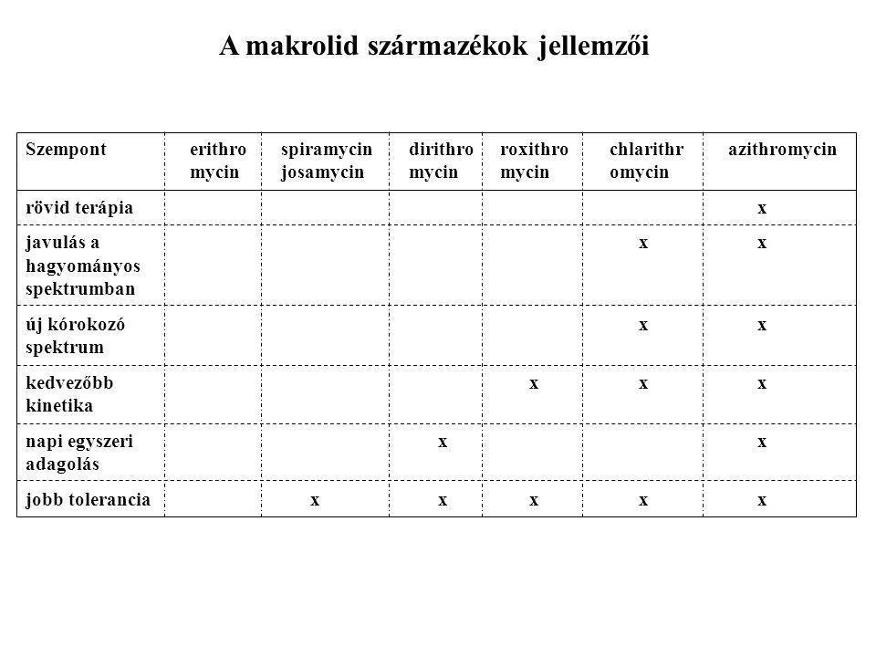 A makrolid származékok jellemzői