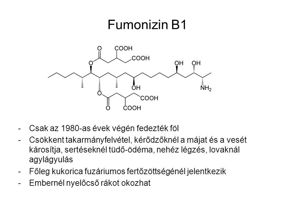 Fumonizin B1 Csak az 1980-as évek végén fedezték föl